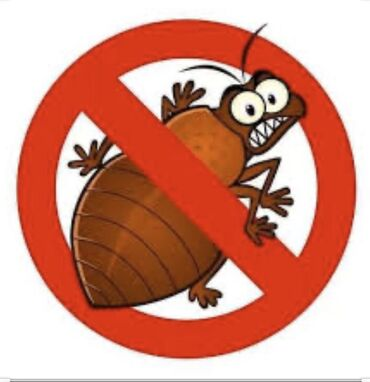 уничтожения таракан блох клопов в Кыргызстан: Дезинфекция, дезинсекция   Клопы, Блохи, Тараканы, Вирусы, микробы   Офисы, Квартиры, Дома