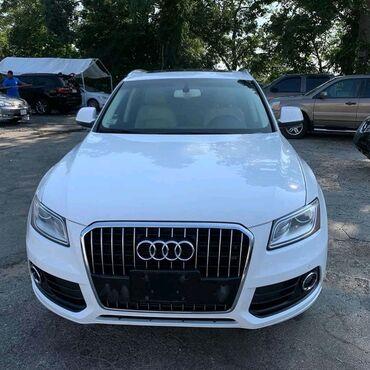 Audi Q5 4.5 l. 2013 | 115 km