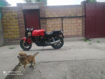 Kawasaki в Кыргызстан: Продаю Кавасаки ззр600 пластик имеется частично технически в хорошем
