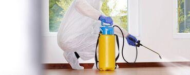 Клининговые услуги в Кыргызстан: Обработка химическим составом квартиры подьезды от клопов тараканов