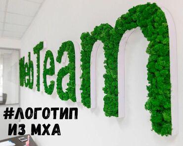 Мох Бишкеке стабилизированный мох БишкекеЛоготип из мха Логотип из