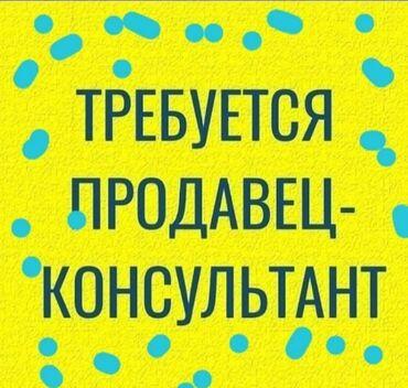 туры с бишкека в Кыргызстан: Продавец-консультант. С опытом. 5/2. Гоин