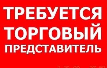 Нужны торговые представители.График с 10 00 до 18 00,5/2. в Бишкек