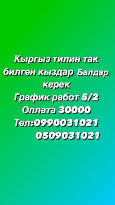 шредеры 17 мощные в Кыргызстан: Помощник завскладом. С опытом. 5/2