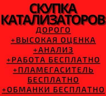 переноска для кота бишкек в Кыргызстан: Скупка катализатора скупка катализатора католизатор котализатор скупка