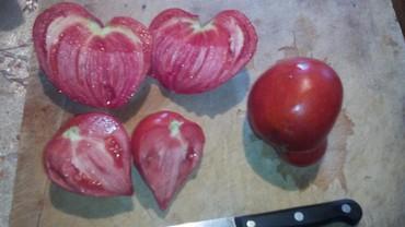 Семена сортовых помидор, от частных коллекционеров России и
