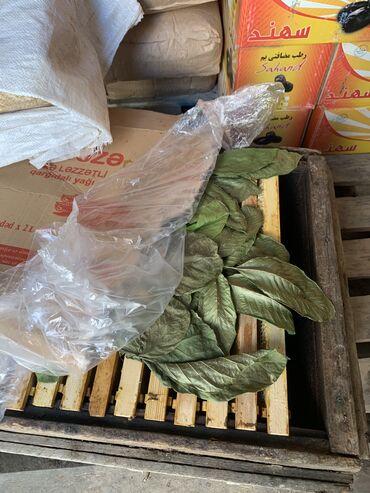 qizlar uecuen bal paltari - Azərbaycan: Temız Ordubad balı maqazada satılanlardan deyıl teze gonderıbler ıstıy