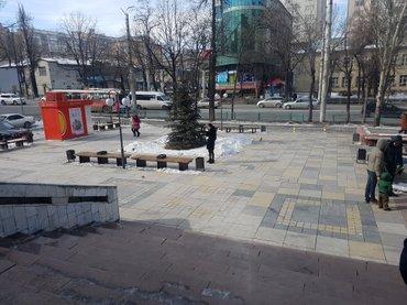 срочно сдаю офис в центре города на советской/ токтогула в Бишкек