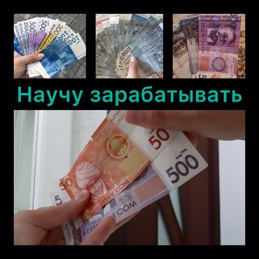 Другие животные - Кыргызстан: Здравствуйте, напишите мне вацап +
