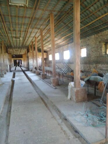 мал-сарай в Кыргызстан: Село Садовое Трасса ✔Участок 1гектар 29соток ✔Помещение 2комнаты 50м2