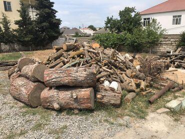 Kömür, odun - Azərbaycan: Her cer razmer et kotuklari