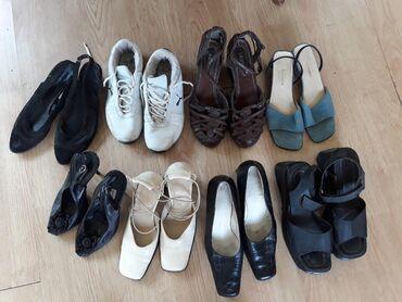 Cipele 38.39 i 40 vel. AKCIJA