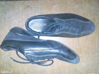 Geoxove kožne patike/cipele, malo korišćene, br. 38. - Sombor