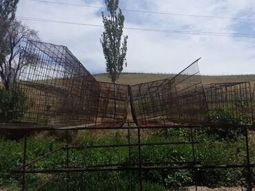 Животные - Селекционное: Продаю клетки для кур несушек Штука - 2500 Количество - 23