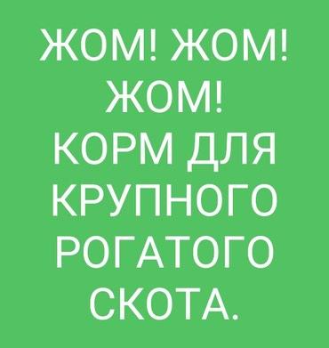 Жом каиндинский свежий уже в наличии! в Бишкек