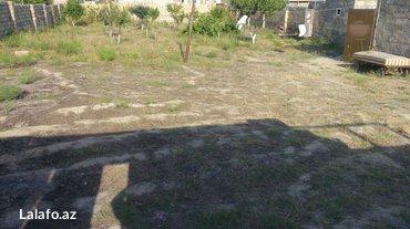 Bakı şəhərində Kurdexanida 8sotun icinde 2otagli ev satilir veya baki weheriyle barte- şəkil 7