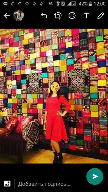 теплое платье большого размера в Кыргызстан: Платье теплое размер xs-s 42-44 новый