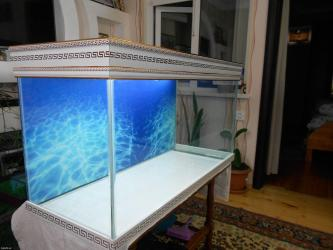 Bakı şəhərində Teze versage akvariumu  220 litrelik wekildeki akvarium