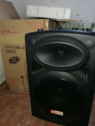 акустические системы колонка сумка в Кыргызстан: Колонка 5000W активная аккамуляторная.Аккамулятора хватает на 4-6