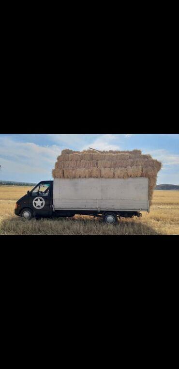 летние шины бу в Кыргызстан: Марка Volkswagen ЛТ 35, год 1997, объём 2.5 дизель только звонить