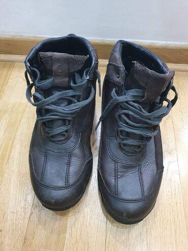 Geox dupoke cipele, broj 41, unutrasnje gaziste 26 cm