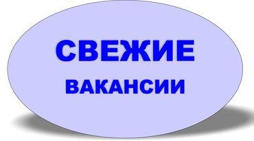 справка о доходах бишкек in Кыргызстан   SAMSUNG: Регистратор договоров и заявок. В коммерческую компанию Орион