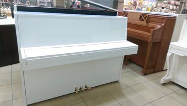 Bakı şəhərində Piano - Avropa istehsalı professional akustik piano