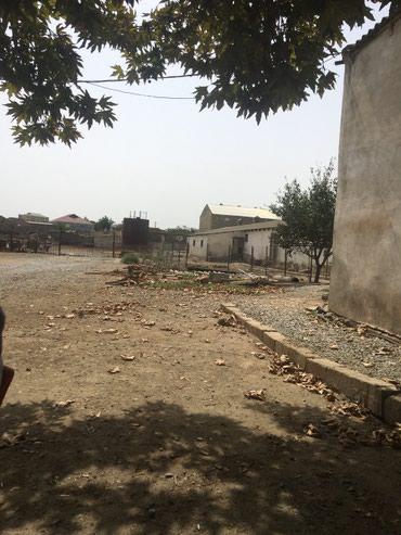 Bakı şəhərində Abşeron rayonu Mehemmedi kendinde 2hektar sahesi olan 200bawliq ferma