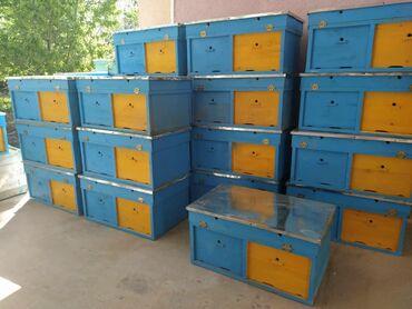 Продается ульи лежаки на 22 рамки дадан. Покрашен, крышка отбита оцинк