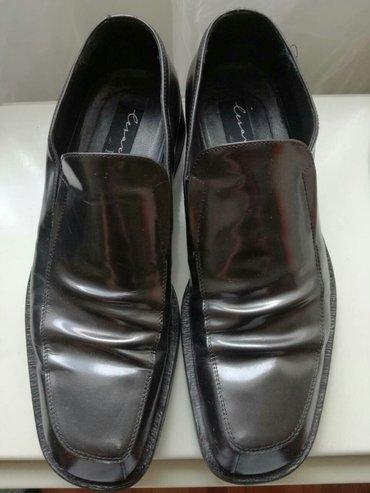 Cesare paciotti cipele. Br. Eur:42, usa:8. Koža, kožni đon. 3490 din - Belgrade