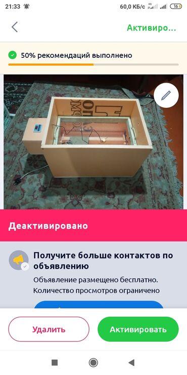 Животные - Тамчы: Инкубатор сатылат.80 жумурткалык.Баасы 3800.Чыгарышы абдан жакшы