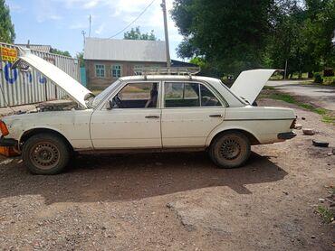 Транспорт - Орловка: Автозапчасти
