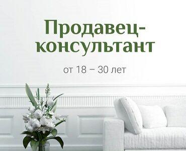 Продавец-консультант. Без опыта. 5/2