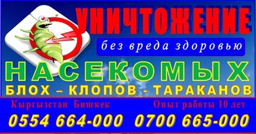 Уничтожение насекомых. блох ,клопов, в Бишкек