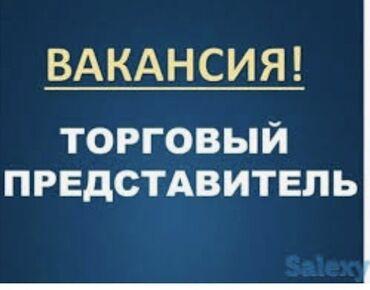 торговый агент с личным авто бишкек в Кыргызстан: Торговый агент. С опытом. 6/1