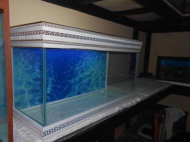 Bakı şəhərində teze versage akvarium  uzunu 70sm  hundurluyu versageyle 45sm  eni
