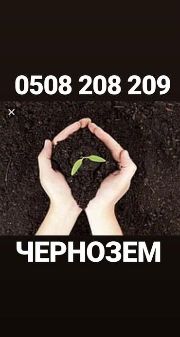Чернозем горный рыхлый чистый в Бишкек