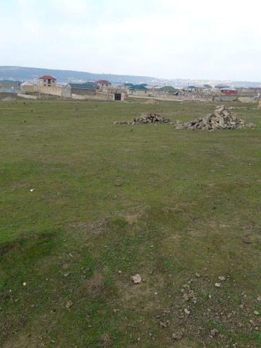 Torpaq в Bakı