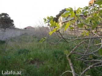 Bakı şəhərində Sabunçu rayonu, bilgəh qəsəbəsi, leyla xanım ziyarətgaxının