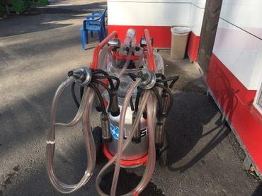 Запчасти для газонокосилок - Кыргызстан: Доильный аппарат Турецкого производства Однофазный Возможность дойки