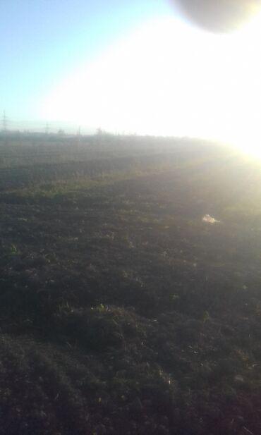 Недвижимость - Хачмаз: Продам 100 соток Для сельского хозяйства