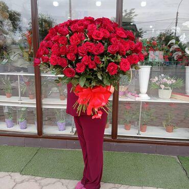 Букет 101 роза Акция
