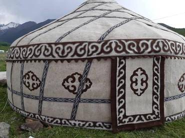 Кыргыз боз уй арендага берилет Бишкекте 85 баш 6 канат баасы 15000 сом