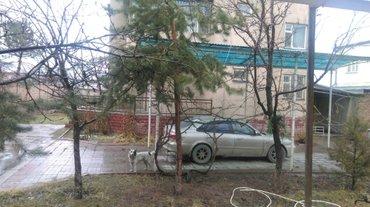 сдается 2 этажный дом 850$ в месяц с подвалом около мкр джал ул. репин в Бишкек
