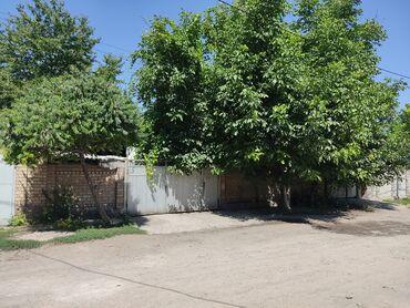 Недвижимость - Новопокровка: 150 кв. м 5 комнат, Гараж, Сарай, Подвал, погреб