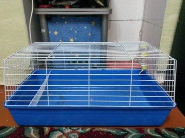 Клетка-вольер. Для кроликов, свинок. в Bakı