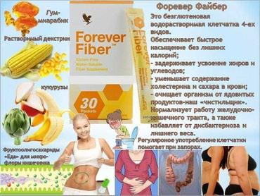 Форевер Файбер в Кызыл-Суу