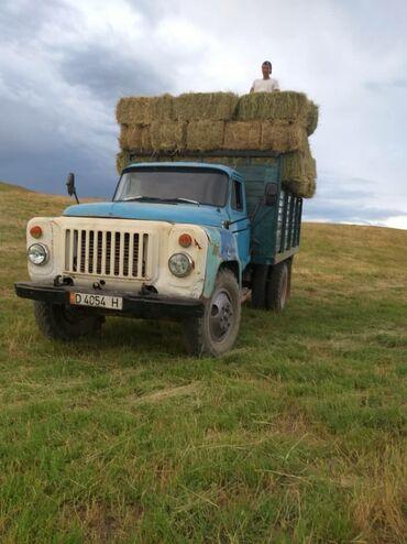 transport v gory в Кыргызстан: Кат ВС водитель ищу работу хорошими коллегами,ответственно отношусь к