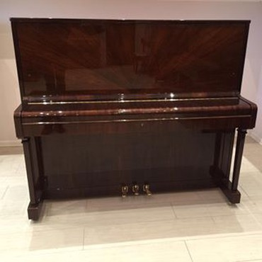 Almaniya istehsalı professional akustik pianoAkustik və Elektron