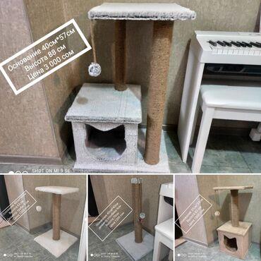 аксесуары для животных в Кыргызстан: Когтеточки для кошек, домики для кошек. Цены ниже рыночных. Абсолютно